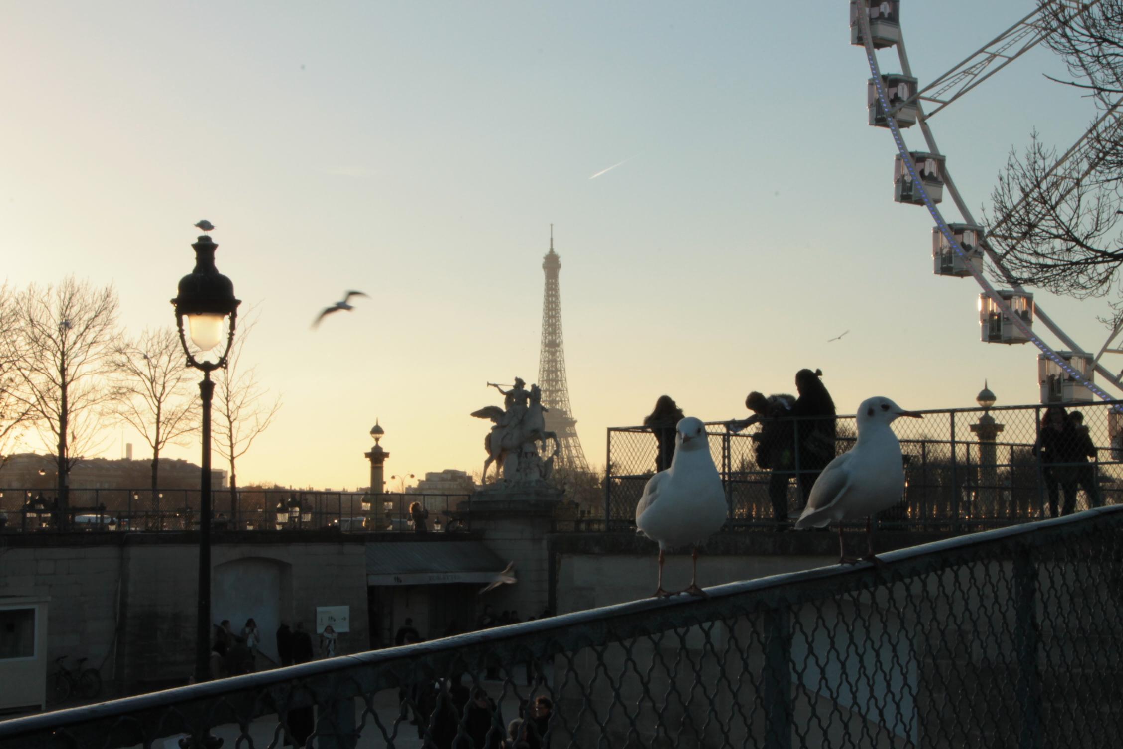 Eiffelturm, Risenrad, Tuilerien 2016